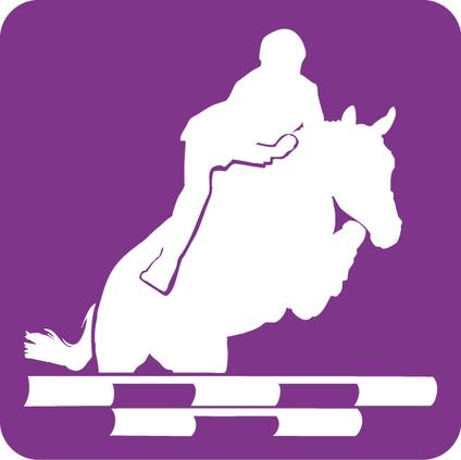 Logo-CSO_imagelarge