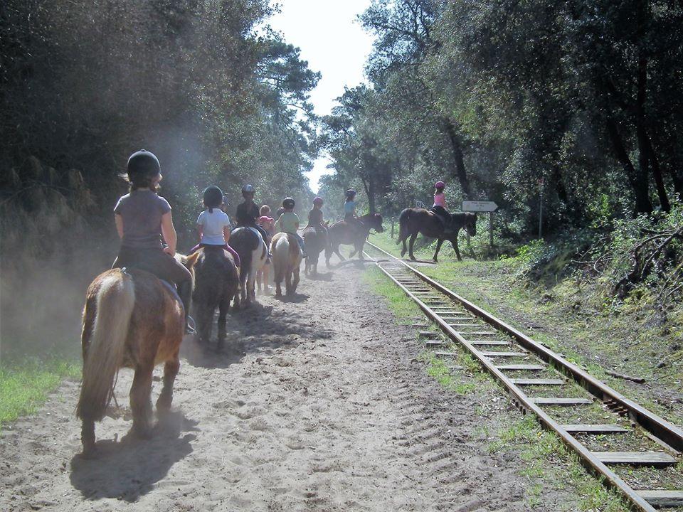 randonnée à poneys